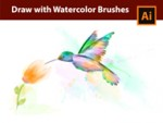 How I draw a Kolibri with Watercolor Brushes in Adobe Illustrator