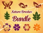 Bundle - Various Nature Brushes