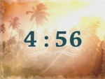 Palm trees Countdown