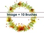 Wreath Brushes
