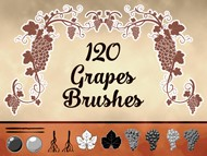 120 Grapes Brushes