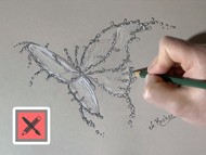 Drawing a Water Splash Butterfly