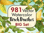 Birch Brushes Big Set