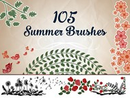 Summer Brushes